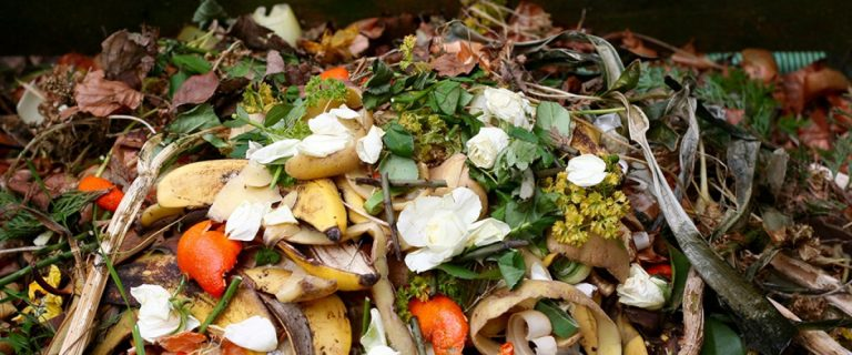 Food Waste for recycling and composting