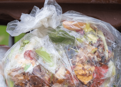 Rats-out-of-bin-clean-food-waste
